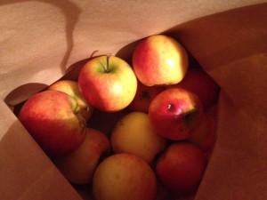 Äpfel aus dem Garten der Tagesmutti meines Großen abgestaubt - jiiiihaaa!