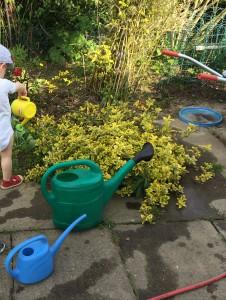 Gießen in verschiedenen Variationen - vor allem an heißen Sommermorgenden die perfekte Beschäftigung für Kinder